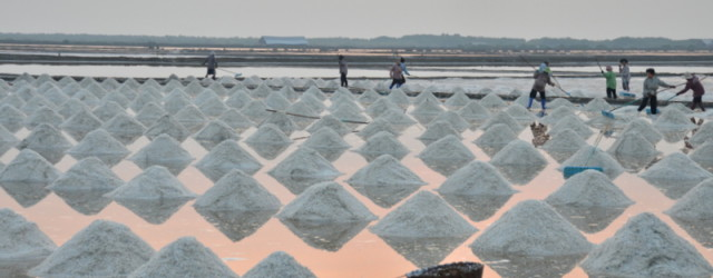 I've hada fascination with salt pans or salt evaporation ponds ever since the time we were returning to Bangkok, just before sunset, and to the west I watched the fire […]